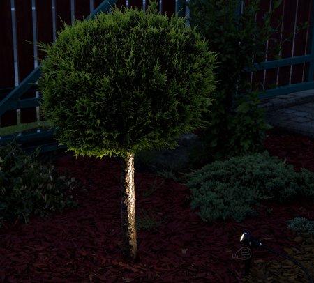 Zarážený zahradní reflektor PLANT LED 3W, 4500K, IP65, černá, 03129, Struhm